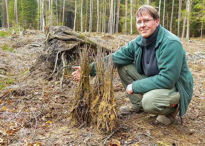 Wir retten unseren Wald